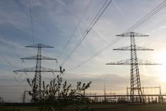 Till Bögelsack #the grid